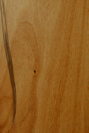 """natural""on knotty alder doors"