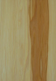 """natural""on hickory doors"