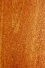 "Poplar doors with ""Curly Maple"" finish"