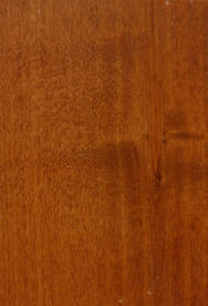 """Curly Maple "" on knotty alder doors"